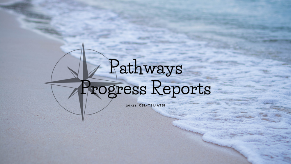 Pathways Progress Reports