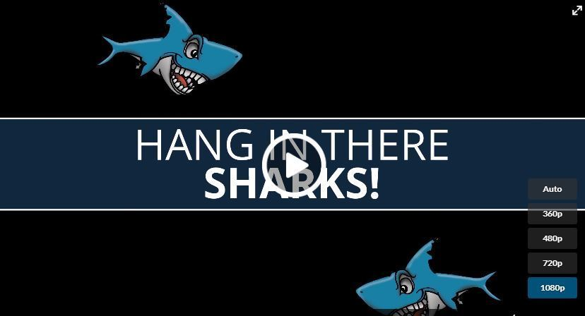 Hang in there Sharks!
