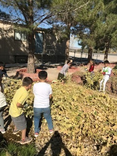 Second and Fifth Grade working in the school gardens.