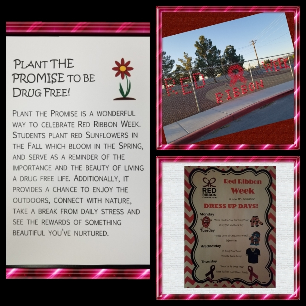 Red Ribbon Week at Floyd